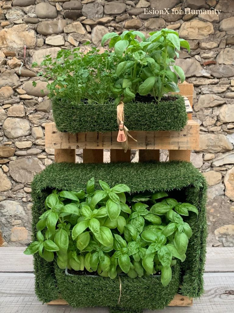 EsionWall - Vertical Seed Walls - Food Wall5