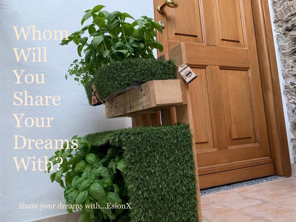 EsionWall - Vertical Seed Walls - Food Wall9