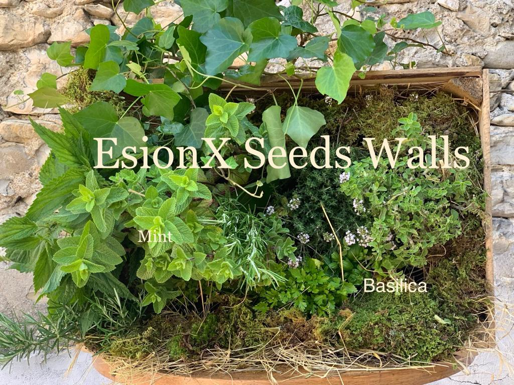 EsionX - Vertical Seed Wall1